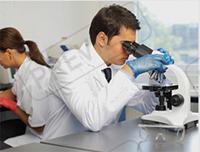 実験室の化学薬品の輸出業者
